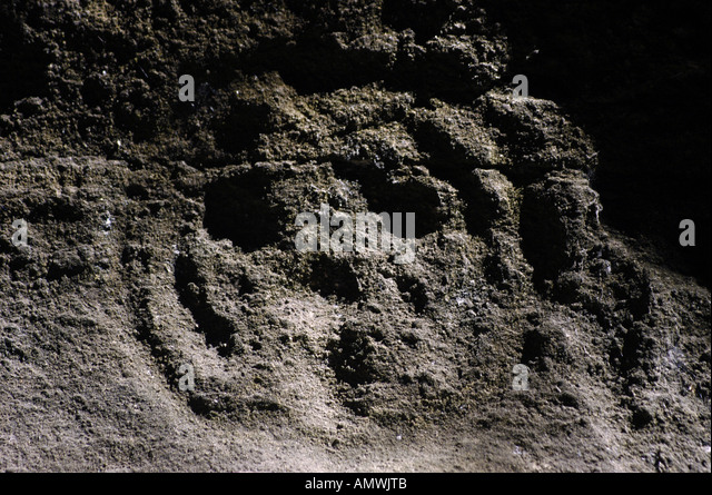 St Kitts Carib indian petroglyph historic site - Stock Image