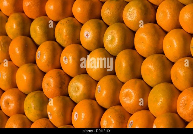 Asien, Indien, Karnataka, Mysore, Mandarinen - Stock-Bilder