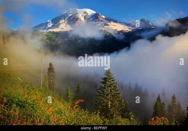 Mount Rainier in the fog - Stock Image