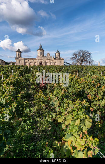 Cos d Estournel, vineyards in Medoc, Bordeaux, Gironde, Aquitaine, France, Europe, - Stock Image