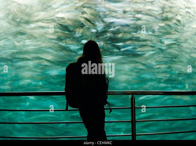 Woman in front of aquarium in Loro Parque in Puerto de La Cruz, Tenerife, Canary Islands, Spain - Stock Image