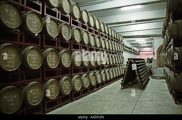 Oak barrels at the wine cooperative Aurora, Bento Goncalves, southern Brazil - Stock Image