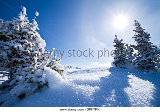 Winter Landscape at Sunshine Village Ski Resort, Alberta - Stock Image
