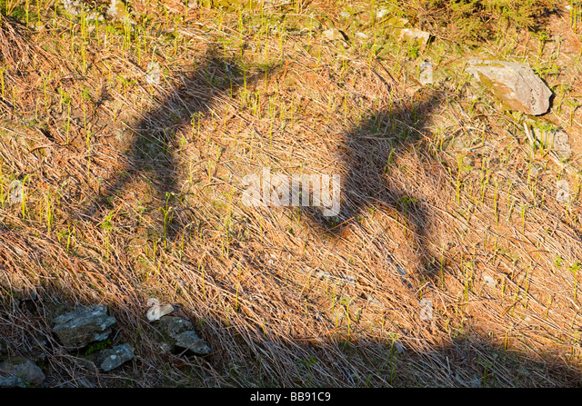 The shadows 2 men jumping in the Lake District UK - Stock-Bilder