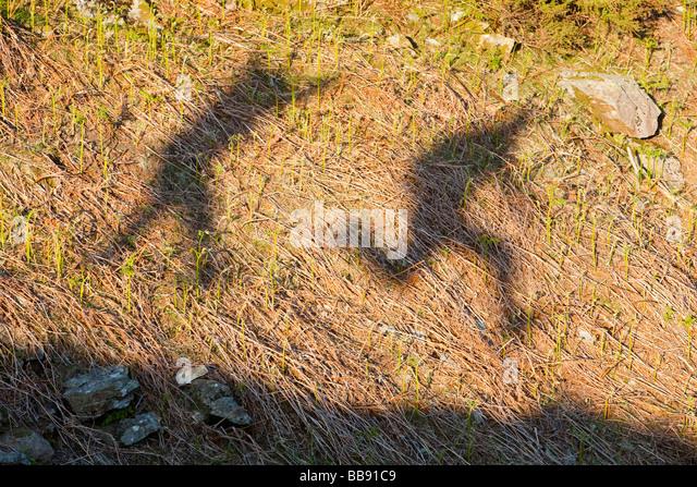 The shadows 2 men jumping in the Lake District UK - Stock-Bilder