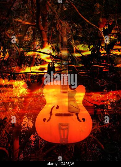 Sunset Guitar - Stock Image