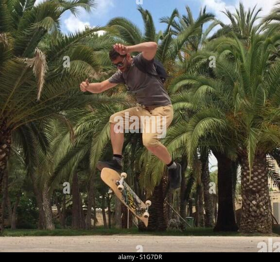 Man skating, jumping in air in front of palm trees - Stock-Bilder