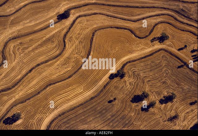 Aerial paddock Victoria, Australia - Stock Image