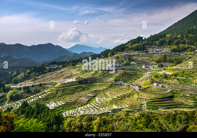 Japanese rice terraces at Maruyama-senmaida, Kumano, Japan. - Stock Image