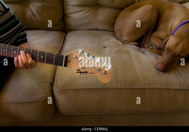 Boy playing his guitar while his dog sleeps next to him - Stock-Bilder