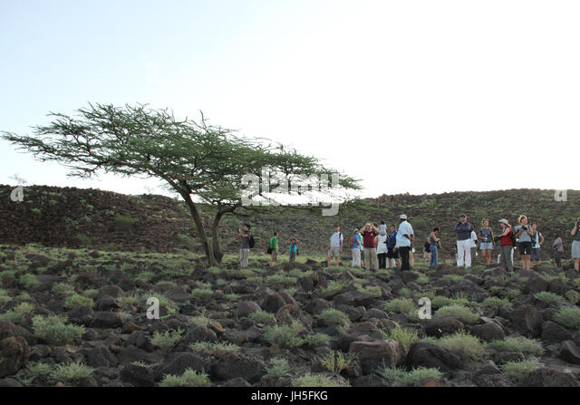 Tourist seen on the Marti Rock Art Site trek on Day two of the Lake Turkana festival. The site run by National Museums - Stock Image