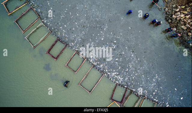 Spring pens stock photos spring pens stock images alamy for Pond fish stocking calculator