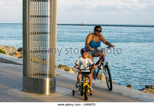 Miami Beach Florida South Pointe Park Government Cut shipping channel urban public space waterfront baby turtle - Stock Image
