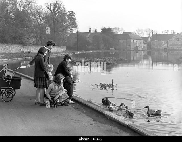 Village duck pond scene, Tickhill, Doncaster, South Yorkshire, 1961. Artist: Michael Walters - Stock-Bilder