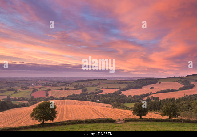 Spectacular sunset above rolling Devon countryside, Stockleigh Pomeroy, Devon, England. Autumn (September) 2013. - Stock Image