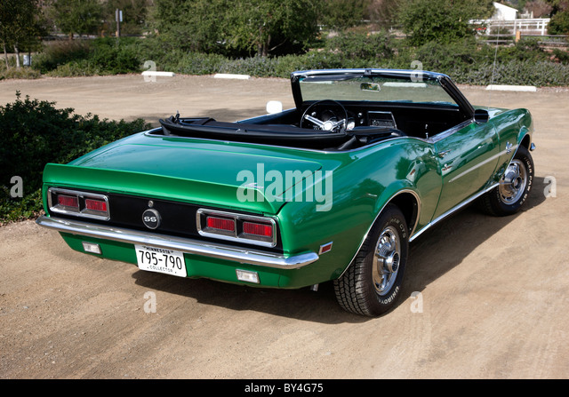 Ss Muscle Stock Photos Amp Ss Muscle Stock Images Alamy