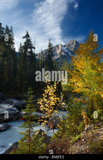 Meeting of the Waters;Yoho & Kicking Horse with Cathedral Crags above, Yoho National Park, British Columbia, - Stock Image