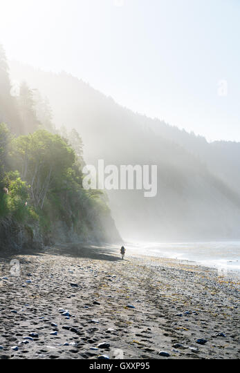 A lone backpacker journeys along The Lost Coast in Northern California. - Stock Image
