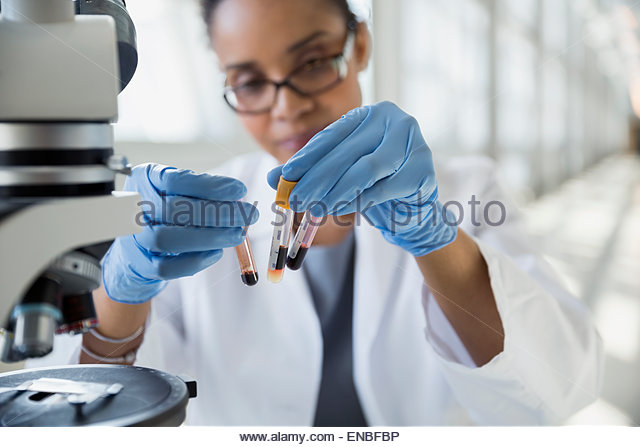 Scientist at microscope examining blood sample test tubes - Stock Image