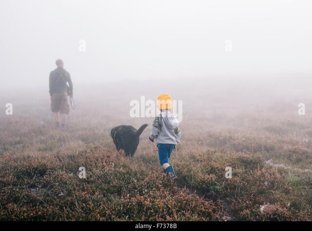 An adult and a child with a dog, walking through heather in autumn mist. - Stock Image