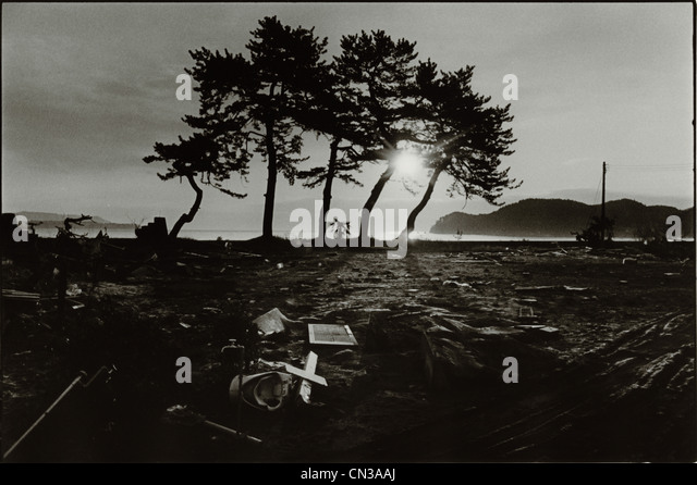 Sunlight through silhouetted trees and debris in aftermath of the 2011 Tohoku Earthquake and Tsunami - Stock Image