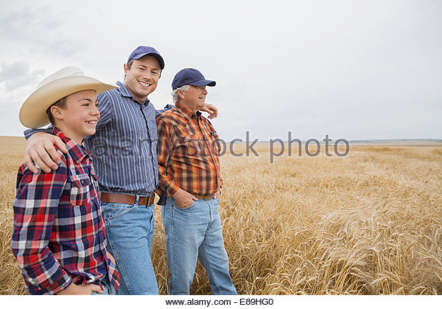 Multi-generation men in wheat field - Stock-Bilder