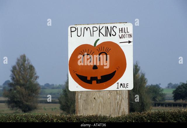halloween store milford ohio