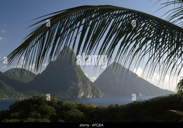West Indies St. Lucia Anse Chastanet Resort guest room balcony view Les Pitons mountains palm tree branch Soufriere - Stock Image