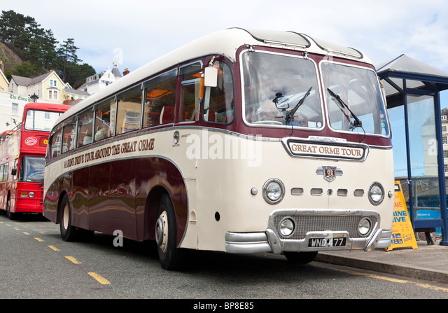 Great Orme Tour, 1950s Leyland bus, Llandudno, North Wales - Stock Image