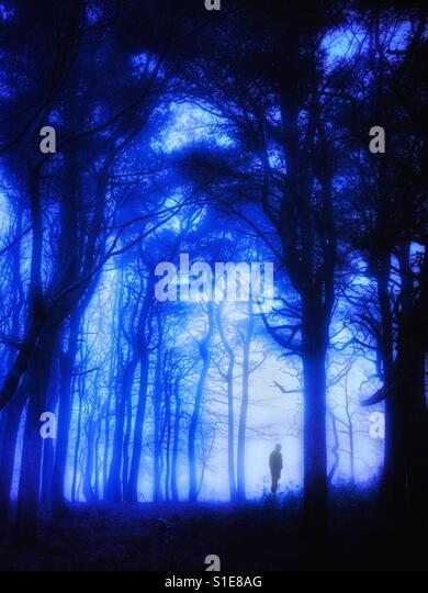Lone mysterious figure in the woodland mist - Stock-Bilder