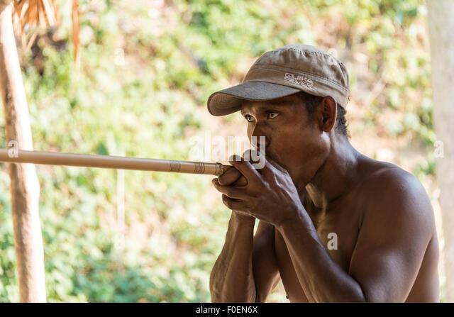 Orang Asli native man shooting a blowgun, Taman Negara, Malaysia - Stock Image
