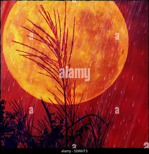 Moon in a Red Sky with Grass and Rain - Stock Image