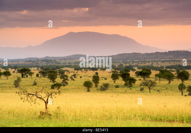 Dawn in Kidepo Valley National Park in northern Uganda. - Stock Image