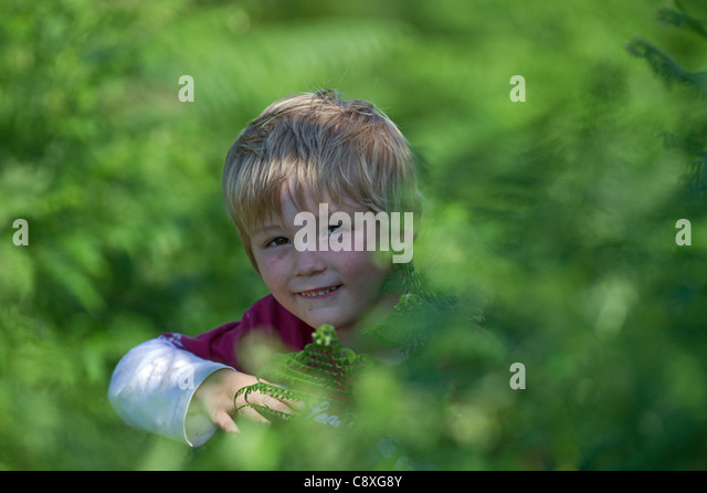 Young boy playing among bracken Norfolk summer - Stock Image