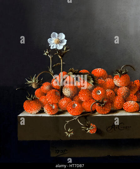 Still Life with Wild Strawberries, by Adriaen Coorte, 1705, Royal Art Gallery, Mauritshuis Museum, The Hague, Netherlands, - Stock Image