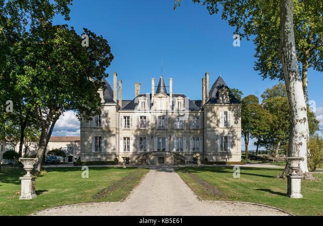 Chateau Latour, vineyards in Medoc, Bordeaux, Gironde, Aquitaine, France, Europe, - Stock Image