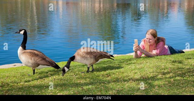 Teenage girl using mobile iPhone phone  device outdoors  MR  © Myrleen Pearson - Stock-Bilder