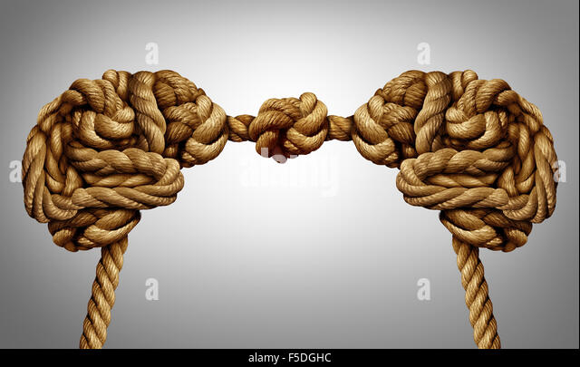 United thinking concept as an alliance for ideas exchange and common agreement as two brains made of rope tied together - Stock Image