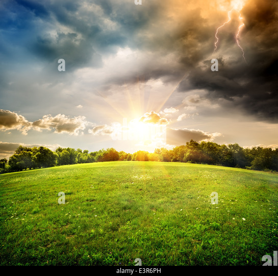 Bright lightning over the field and forest - Stock-Bilder