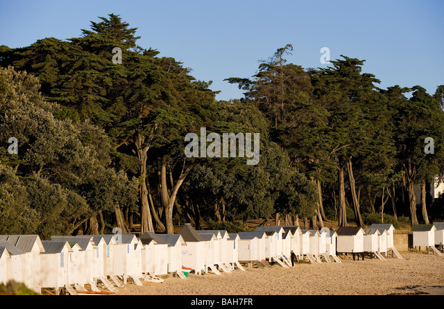 noirmoutier and dames stock photos noirmoutier and dames stock images alamy. Black Bedroom Furniture Sets. Home Design Ideas