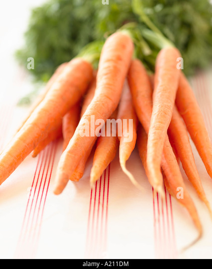 Bunch of Carrots - Stock Image