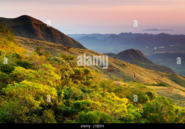 Early morning in Altos de Campana National Park, Republic of Panama. - Stock-Bilder