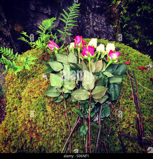 Memorial to accidental death, Little Qualicum Falls Provincial Park, Vancouver Island, Canada - Stock Image