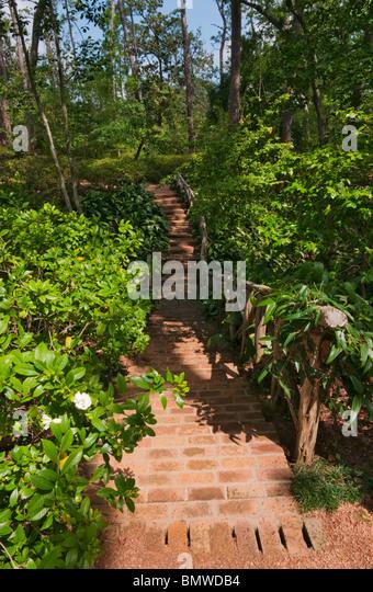 Bayou Bend Stock Photos Bayou Bend Stock Images Alamy