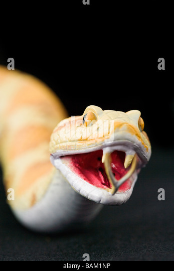 Toy snake - Stock Image