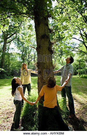 30's family holding hands around base of three in green countryside looking up into branches, - Stock Image