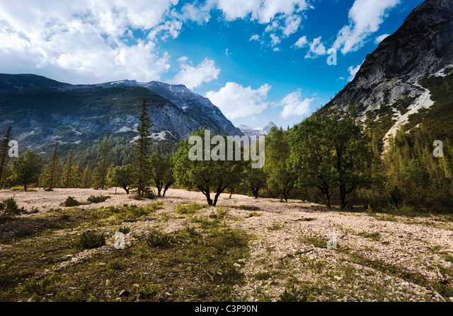 Austria, Tyrol, View of landscape with mountains in background - Stock Image