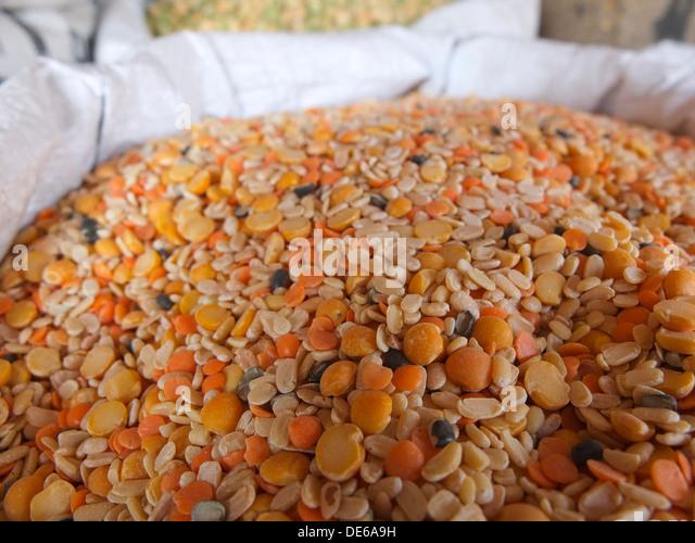 India, Rajasthan, Jaipur, split lentils - Stock Image