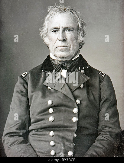 Zachary Taylor, President Zachary Taylor, the 12th President of the United States - Stock-Bilder