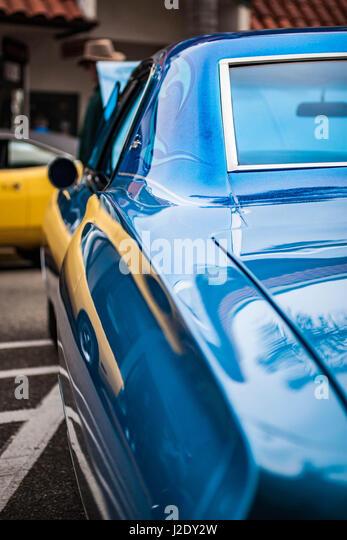 YellowVsBlueMuscle1432   - Stock Image
